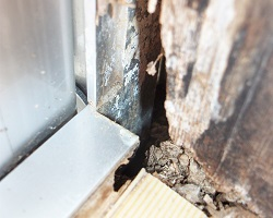 家屋の老朽化を早める空家リスクとは