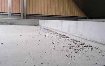 郡山市昭和アパート清掃・階段掃除前
