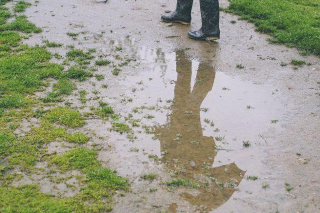 梅雨時期の草むしり